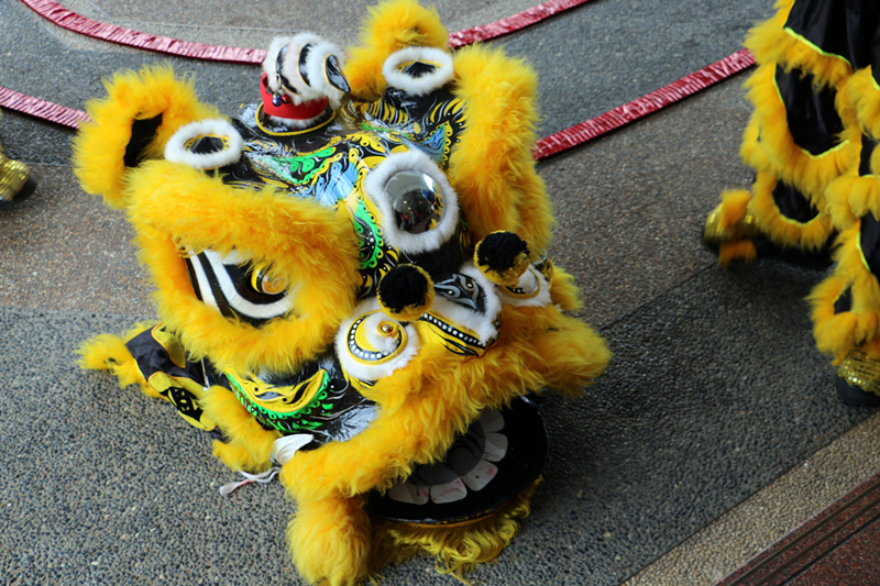 Chinese New Year Lion Dance 5