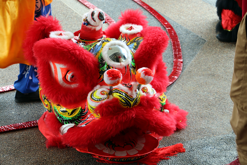 Chinese New Year Lion Dance 6